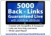 give you 5000 backlinks with nofollow attribute
