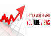 Deliver Human youtube VIEWS 5000+