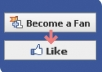 give you 1600 facebook likes guarenteed to your facebook fanpage without admin access
