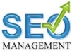 manually create weekly SEO campaign including Wiki, Web 2.0 , Social Networks, Forum Profiles and RSS backlinks