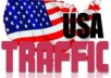 deliver 2500 USA / AMERICAN Real Human Traffic To Your Site/Blog in 24 hours
