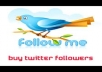 add 500 US real twitter followers in 2 days