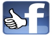 get You permanent 350++ REAL facebook likes 