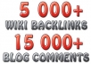 create Panda and Penguin SAFE link pyramid with over 20000 backlinks..
