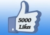 give you 5000 real facebook likes with in 24 hours 