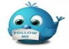 give you 440+ twitter followers 100% real and only