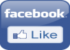 get you 450+ REAL facebook likes to your fanpage