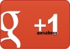 proVide you real human 50+ GOOGLE plus ones/g+1 for your website, fanpage or any url