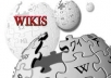 make 100 high pr edu wiki links and 200 high pr authority backlinks!!