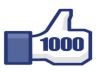 give 1000 Real likes to your Facebook fan page or Post