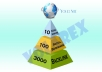 create link pyramid with 10 level 1 edu wiki, 100 level 2 social bookmarks and 3000 backlinks ..