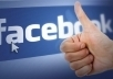 provide REAL 250+ facebook likes