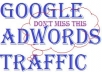 1000 Google Adwords Website Visitors of Actual Value $500