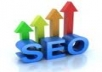 write a complete 30 page indepth SEO and sem report for your website 