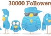 Add 30000+ Twitter Followers To Your Followers, No Password Required