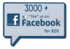 give you 3000 FACEBOOK likes fans
