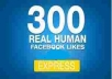 give you 100% real human 300++ facebook likes only