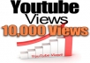give you 10000 Real Human Youtube Views with 100 likes, 30 subcribers, 10 comments