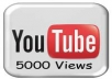 add 5000 youtube views, 50 likes, 50 favorite no admin