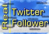 add 100 Real and Active Twitter Followers in 24 Hours, no password needed