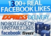send You 1300+ High Quality Total Real Active Facebook Likes, Quick Genuine Fans...@@@