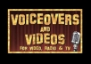 perform a voiceover for a promotional video or commercial!!