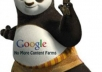 write Panda friendly SEO content!!