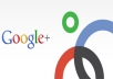 give you 500 google plus vote in 5 urls in 24 hours