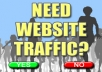 send 1000 real targeted USA visitors to your website!!!!!!
