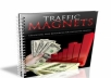Give You The Most Powerful Strategies For Generating Unstoppable Traffic To Your Website