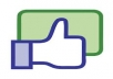 Give You 300 Real Facebook Likes Fan Page