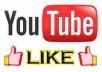 provide 100% real 1000 youtube video likes only