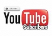 provide 1000 youtube subscriber only