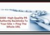 Create For Your Website 6000 High Quality PR Authority Backlinks To Your Site And Ping The Whole Url To Boost Your Search Engine Ranking