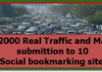 send 2000 traffic to your site and submit your site to 10 great social bookmarking site