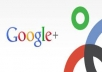  deliver 400++ Google plus Circles Real Human to seo rock up your high rank on google 