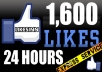give You 1600+ Facebook Fans USA Likes With Profile Pictures And Fully Profiled Accounts Which Look Like Real Accounts Only!!!