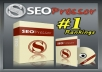 give you WP Plugin SEO Pressor leverage to your blog on the search engines