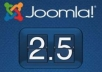 install Joomla on server, web host and fixing error,bugs in Joomla!!!