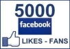 give you 5000 REAL HUMAN not fake Facebook Fan Page Likes in 24 hours
