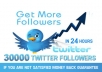 give you 30,000 Real Looking twitter follower to your twitter account within 24h