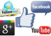 add 1000+ USA Facebook Fan Likes to your Fan Page or Web Domain ,profiled fan likes for your fan page or website,usa insight only, very fast.....!!!!!