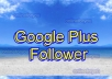 I will deliver 50 Google Plus Follower to seo rock up your high rank on google