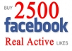 get You 1200+ High Quality Total Real Active Facebook Likes, Quick Genius Fans