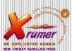 build eminent backlink pyramid with 5000 profiles,most dofollow,include some edu gov,good seo for youtube by using xrumer senuke scrapebox...!!!!!