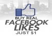 give you 100 REAL FACEBOOK LIKES or FANS only from REAL PEOPLE
