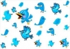 provide you 15,000 twitter followers 