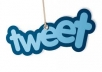 give you 100 tweets for your website button in 24 hours