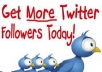 give you 300 REAL TWITTER Followers Daily