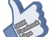 read gig description/ give you REAL Worldwide Facebook Fans Likes to your Fan Page or Web Domain..!!!!!!!!!!!